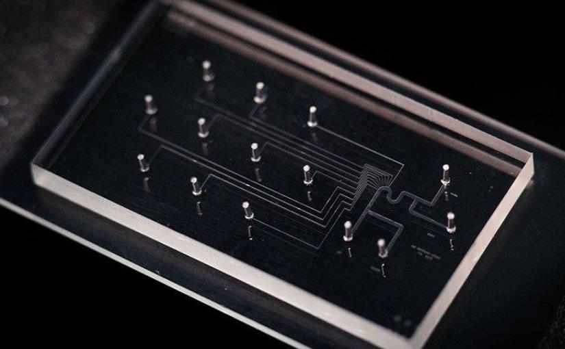 Une puce microfluidique emprisonne les cellules cancéreuses simples pour analyse