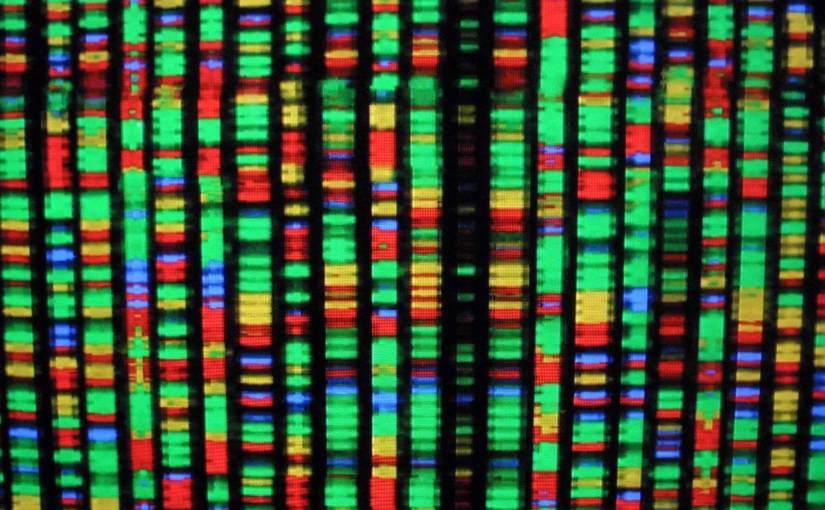 Des chercheurs britanniques viennent de terminer le séquençage de 100 000 génomes humains