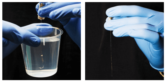 Left: As demonstrated here in water, the mesh is extremely flexible once in the brain. Right: Out of the brain (or water), the structure goes limp. Credit : MIT Technology Review