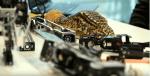 Des robots reptiliens espionnent la nature