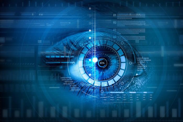 biometrics iris oeil