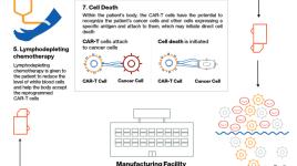 Thérapie cellulaire CAR-T cancer Novartis