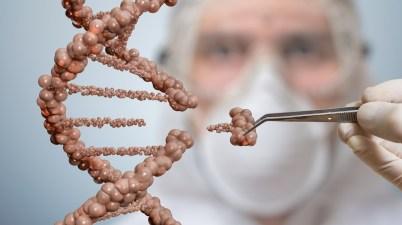 CRISPR Cas9 adn