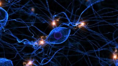 Réseaux de neurones artificiels