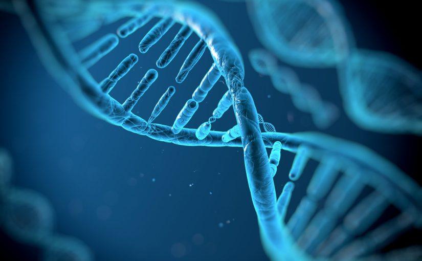 La Maison-Blanche pour un examen approfondi des implications de la manipulation du génome