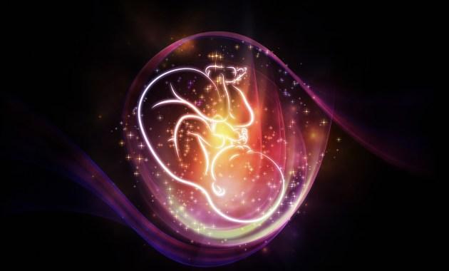 naissance grossesse enfant bébé utérus artificiel bébé