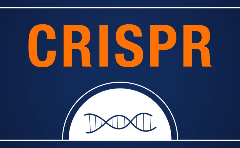 CRISPR-Cas9 peut produire des suppressions d'ADN