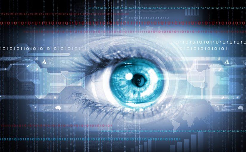Le projet oeil bionique : Boston Retinal Implant Project (BRIP)