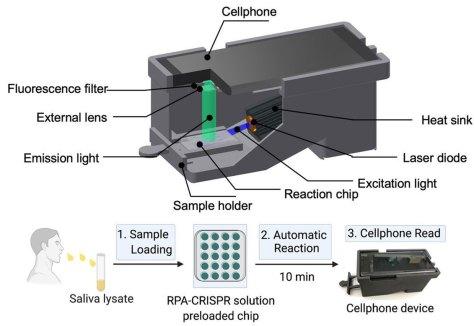 test COVID-19 avec un smartphone CRISPR