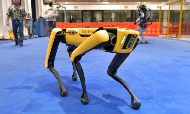 chien robot fabriqué par Boston Dynamics