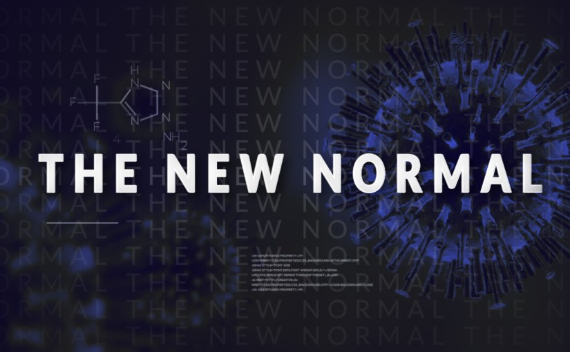 Ancienne normalité vs New Normal