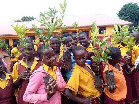 Trees Provide Future for Impoverished Ugandans