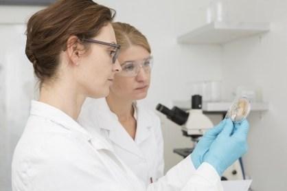 Laboruntersuchung Schälchen