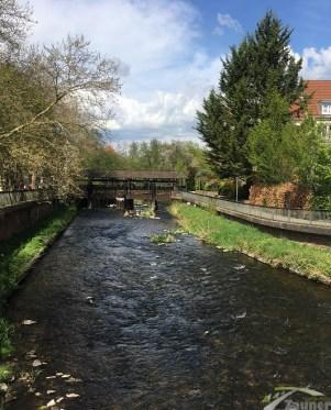 Ettlingen_IB-Zauner