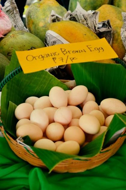 ibaan municipal agriculture office organic products mayor danny toreja ethel joy caiga salazar 16