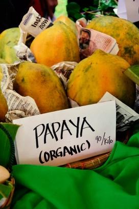ibaan municipal agriculture office organic products mayor danny toreja ethel joy caiga salazar 17
