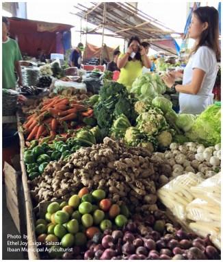 ibaan municipal agriculture ethel joy caiga salazar myla soriano mayor danny toreja ibaan batangas food center 14