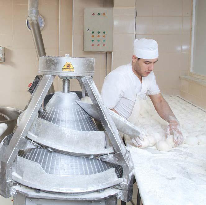 processing-group-dough-rounding