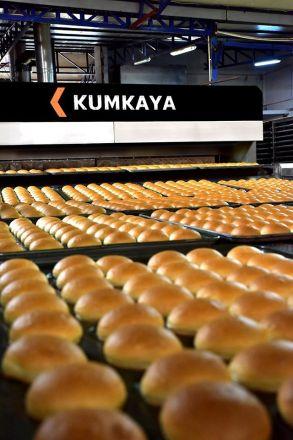 bakery-equipment-tunnel-ovens