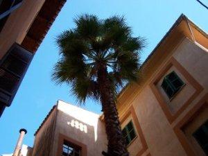 Barri de Sant Pere, al Centre Històric de Palma / Old Quarter