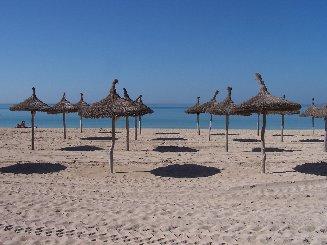 s arenal platja de palma