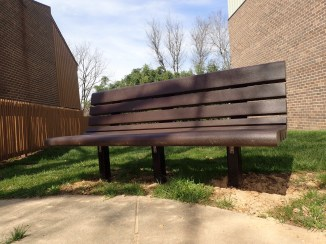 Bench, human view