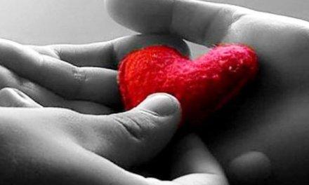 Amor Vrs Aborrecer