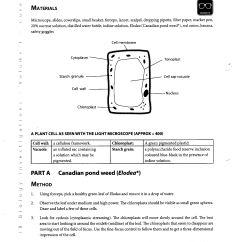 Hr Diagram Worksheet Middle School 1982 Chevy C10 Wiper Wiring Printables Cells Lemonlilyfestival Worksheets