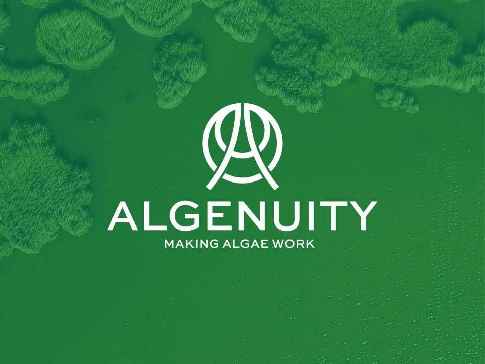 Algenuity biotech logo and branding design