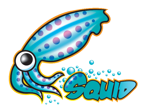 Squid Caching Proxy - Web Performance Software