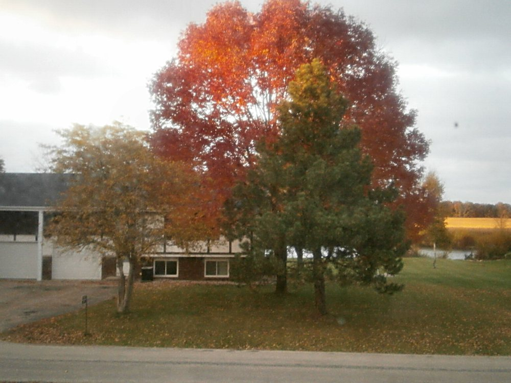 Fall Pictures in WI- 2015 (3/4)