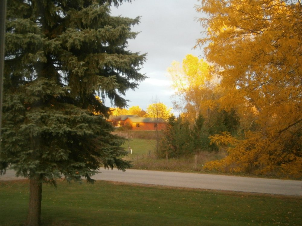 Fall Pictures in WI- 2015 (2/4)