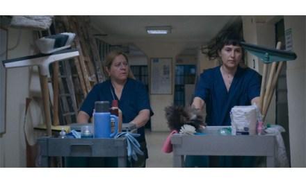 """""""Planta Permanente"""" (Argentina) gana premio a mejor película del Festival de Huelva"""