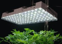 Best Indoor Grow Lights 2017