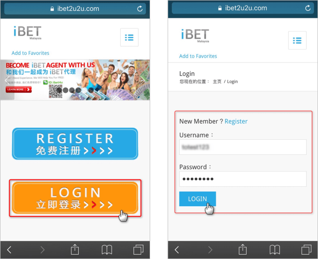 "Use Mobile enter to iBET homepage and click ""Login iBET"" and fill in your account."