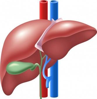 اعراض التهاب المراره الخفيف