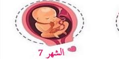 وضعية الجنين في الشهر السابع