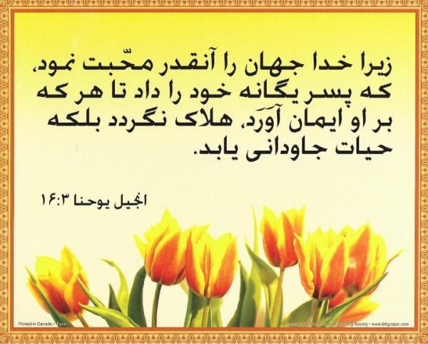 8x10_Farsi_John_3_16[1]