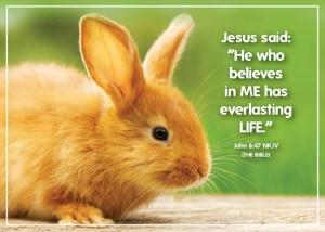 John647_5x7 Text 2020 rabbit