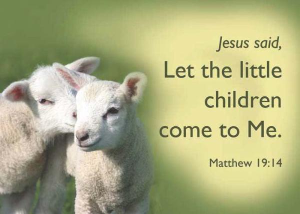 lambs-Matt1914[1]