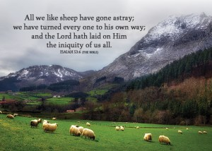 Isaiah536_5x7 Text 2019 HillsideSheep