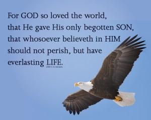 John316_8x10 Text 2019 Eagle