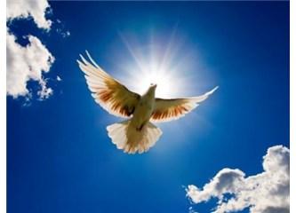 Allah Mehdiyetle Hz. Süleyman gibi dünya hâkimiyeti oluşturacak
