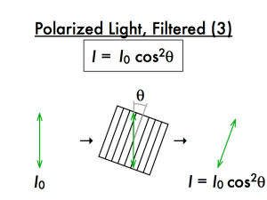 IB Physics - Topic 4: Waves