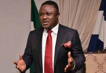 Why Gov Ayade's agro-industrialisation strides need FG's support - Hon Idagbo