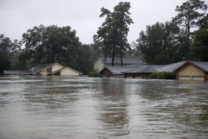 Food availability under threat as flood persists - Rep