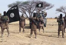 Boko Haram Raids: 4 civilians killed in Cameroon