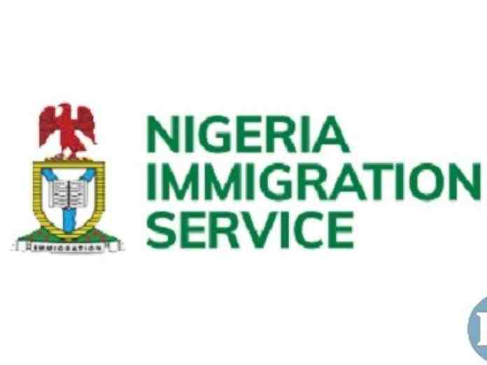 100 Nigerians lost their lives to illegal migration in 2020 – Group
