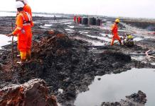 Ogoni Oil Spill: 9 years after, only 11% of planned sites achieved - Report