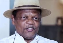 Atedo Peterside Decries Nigeria's Economic Challenges - THISDAYLIVE